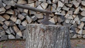 The Woodcutter and the Axe